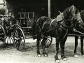 Original Horse Drawn Cart